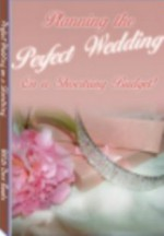 Read Planning the Perfect Wedding